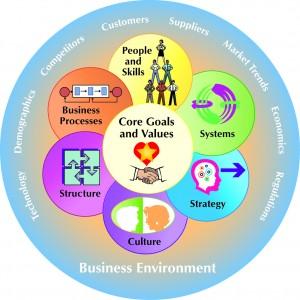 Elements of an Organization